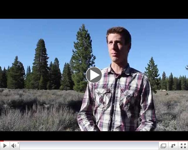 Bowen Humphreys - Energy Technician, Sierra Nevada Energy Watch