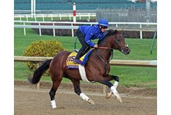 Thunder Snow gallops at Churchill Downs