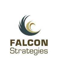 Falcon_Strategies.jpg