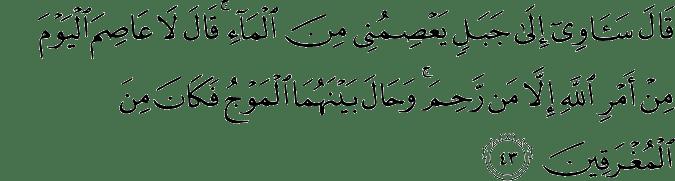 Tafsir Al Quran Surat Hud Ayat 41 50 Dan Terjemahan