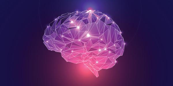Post-Bachelor's Certificate in Neuroscience, Learning & Online Instruction