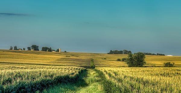 Iowa. Foto Pixabay