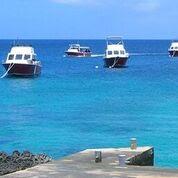 Caymans