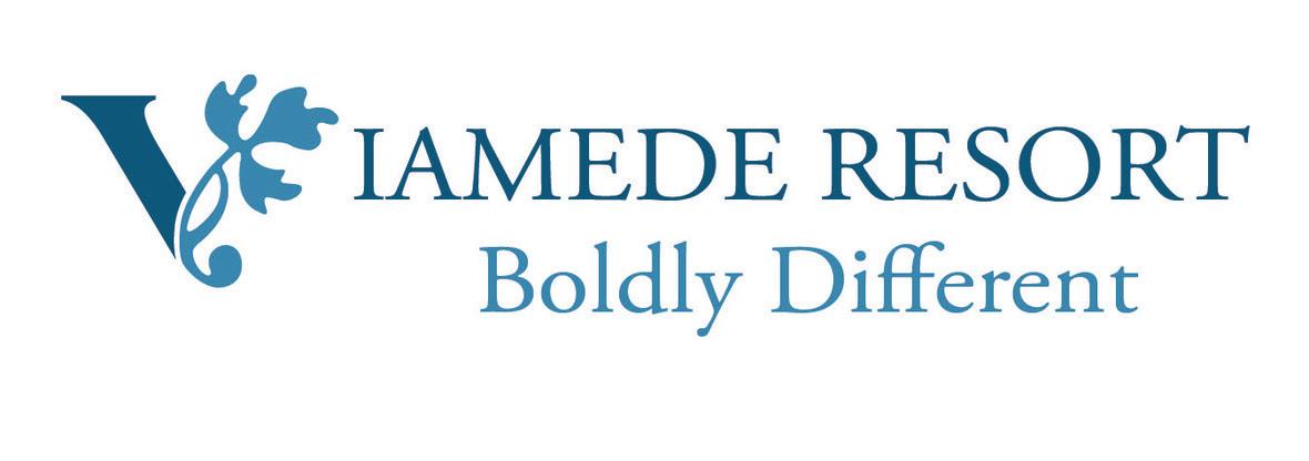 Viamede Logo