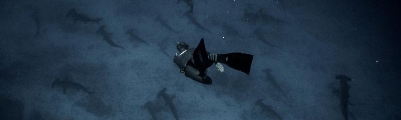 Défenseur de l'Océan : Guillaume NERY, apnéiste Hors Norme