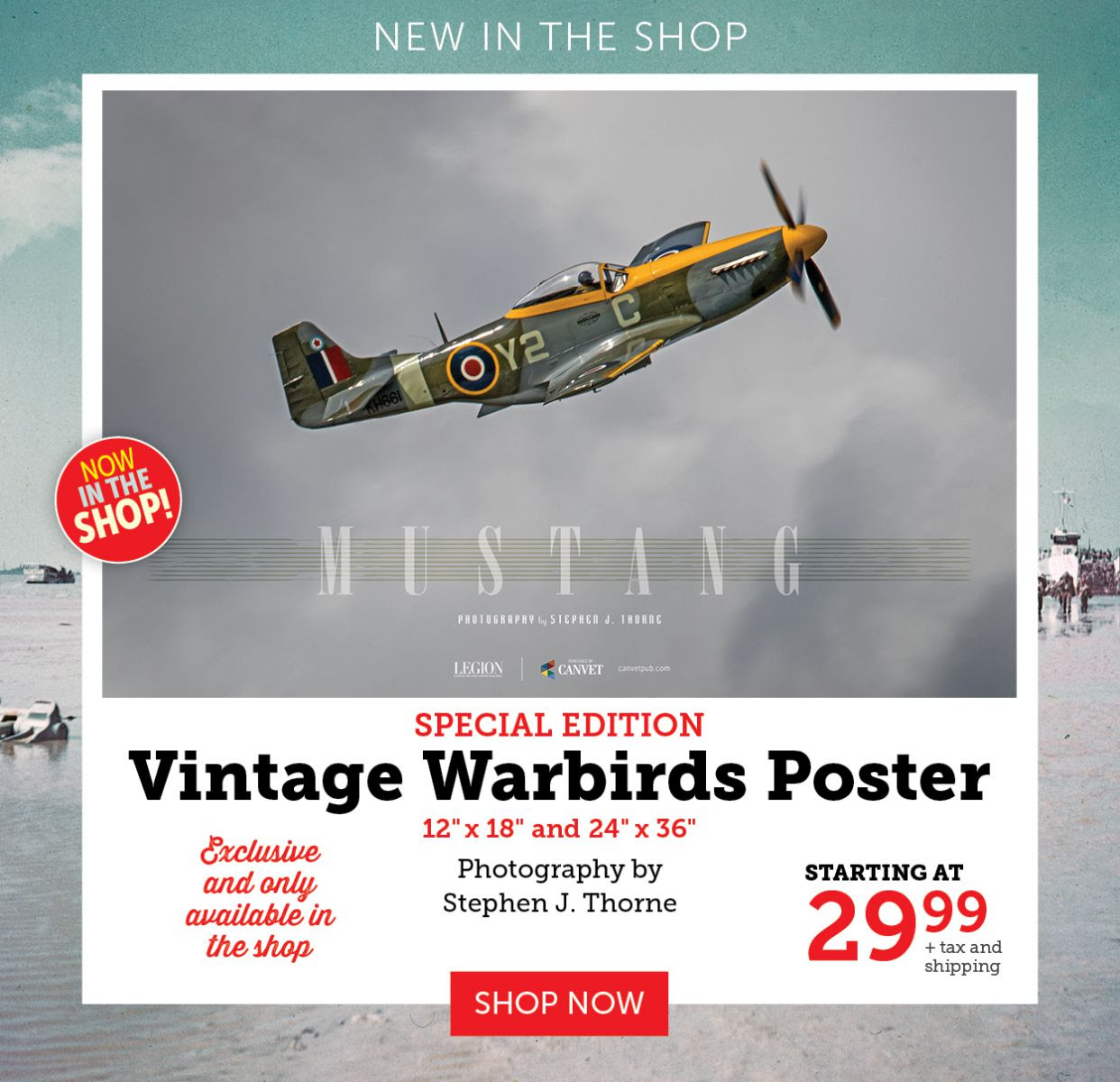 NEW Vintage Warbirds Poster - Mustang