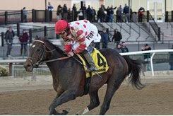 Mind Control wins the Tom Fool at Aqueduct Racetrack