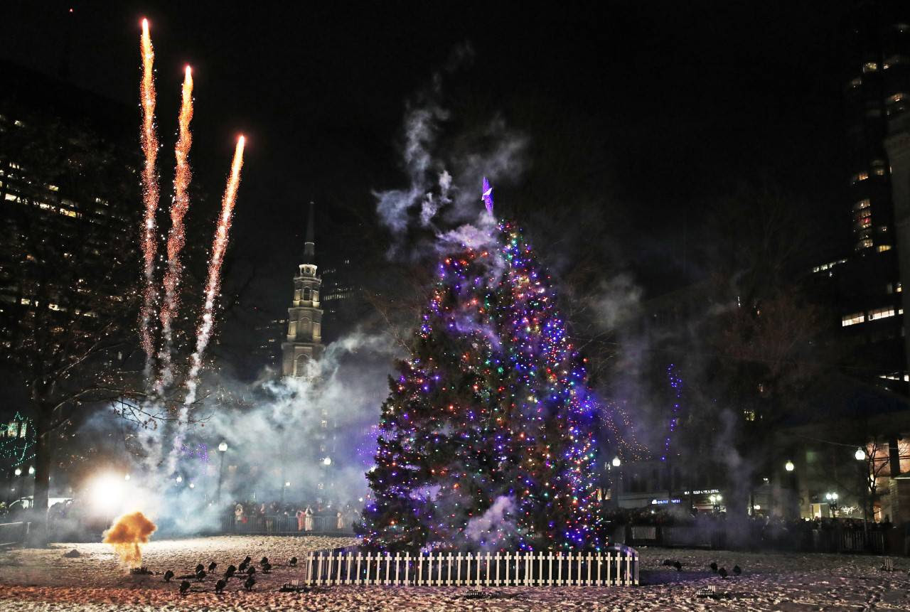 Huge Boston Christmas tree an annual gift from Nova Scotia