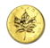 pure gold coin