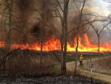 April 18 2015 Rx fire near Orland - Chari Knoblauch in photo 5
