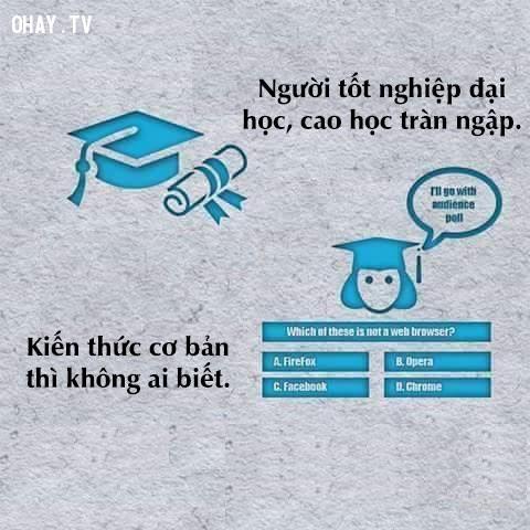 Số sinh viên ra trường ngày một nhiều hơn, ai cũng có cơ hội học hành; nhưng ngay cả kiến thức cơ bản hằng ngày cũng không quan tâm.,thực trạng xã hội,tiêu cực