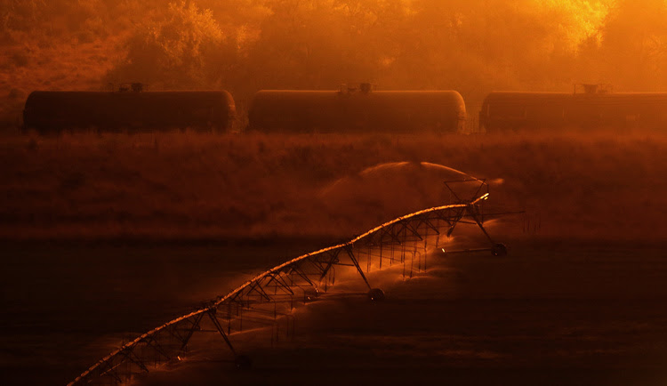 Irrigation sprinklers water a field early Sunday morning as a wildfire burns on a hillside above stopped rail cars near Othello, Wash. This has been another awful fire season in the Pacific Northwest. (Ted S. Warren/AP)