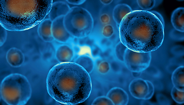 Blue cells with orange centers float on a blue background.