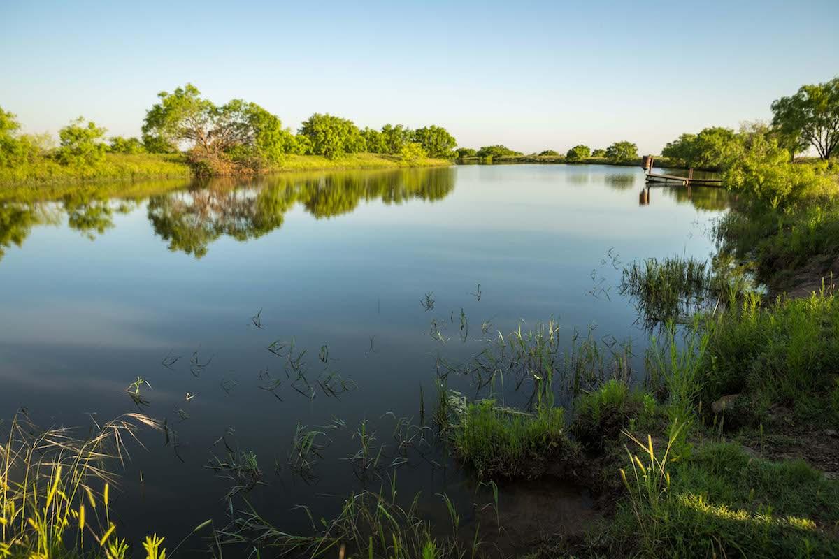 Abundant Surface Water