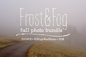 FREE: Frost&Fog Photo Bundle