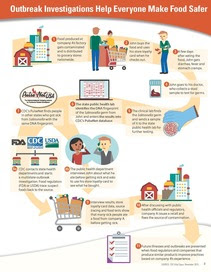 Food outbreak infographic