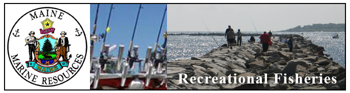 Maine DMR Recreational Fishing
