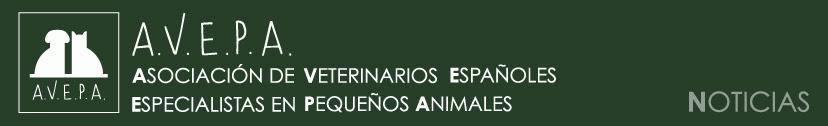 """AVEPA Elearning Medicina del Comportamiento. Curso Online sobre """"Miedos y fobias en perros y gatos"""". Del 3 de Febrero al 3 de Marzo de 2021"""