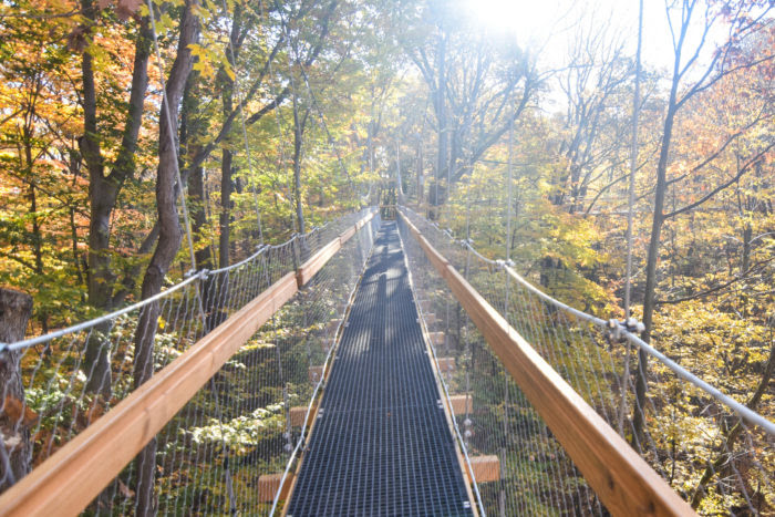 This Canopy Walk In Ohio Will Make Your Stomach Drop