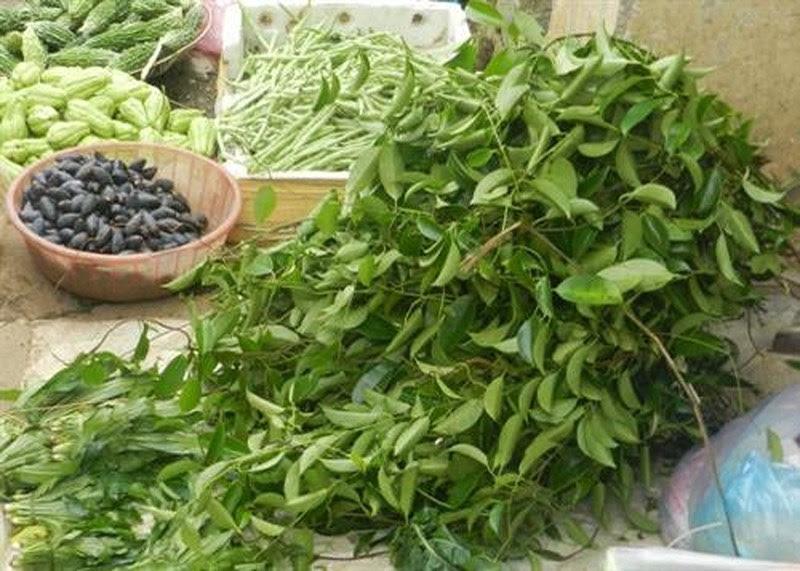 """Các loại rau rừng """"đỉnh nhất"""", ăn là nghiện của vùng Tây Bắc - 4"""