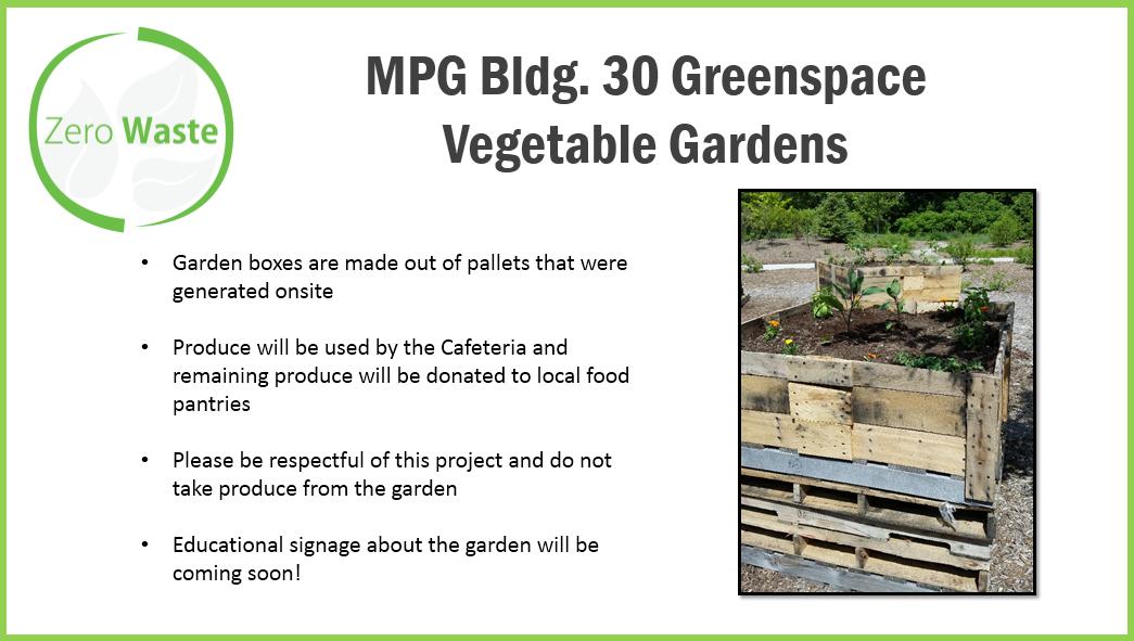 vegetablegardens1