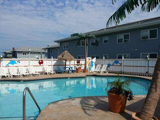 beach bum motel pool.jpg