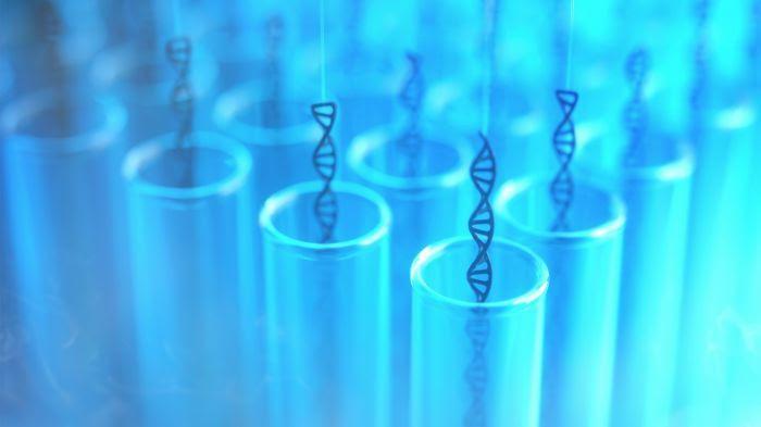 Molécules d'ADN dans des tubes à essai.