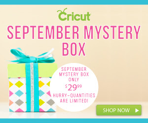 Cricut`s September Mystery Box...