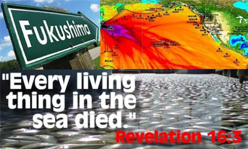 Is Fukushima God's Judgment Against Man's Sin? (Did You Know There Is A Prophecy In the Book of Revelation Declaring God Will Kill the Oceans?)