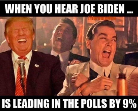 joe biden leads polls