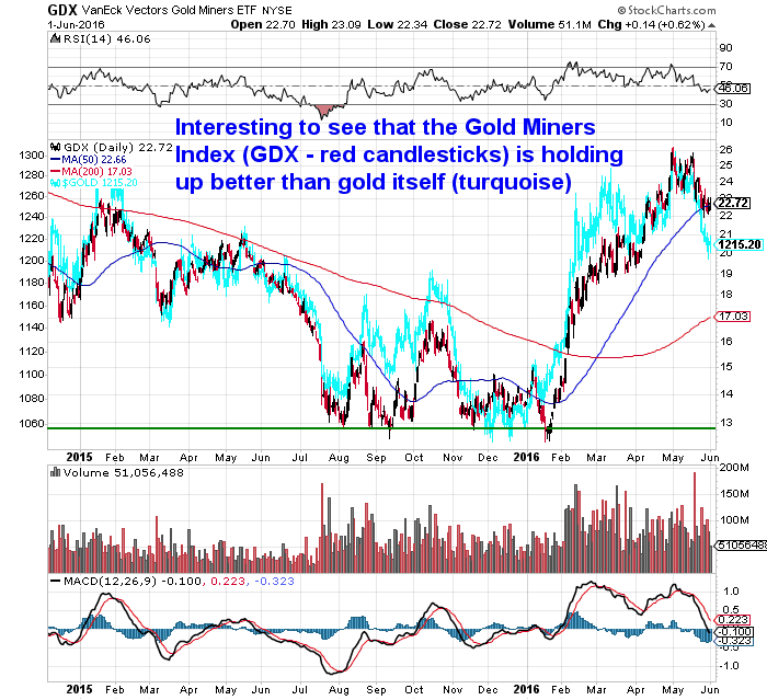 GDX Miners Index versus Gold Chart