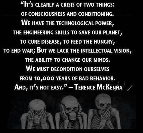 Image result for terence Mckenna Quote coincidentia oppositorum