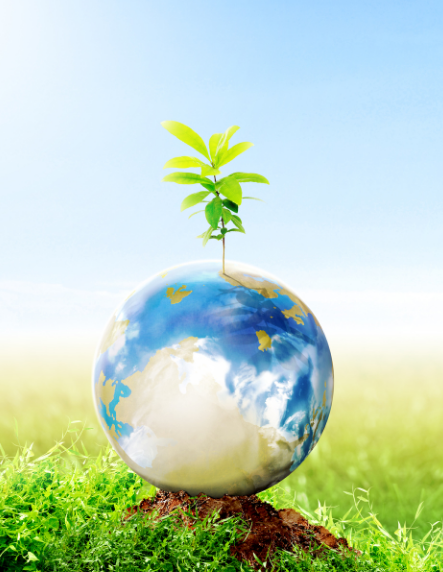 Earth with plant