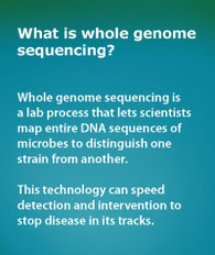 Scientists map entire DNA sequences of microbes using whole genome sequencing.