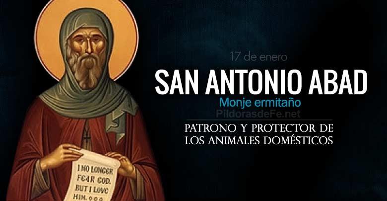 san antonio abad monje patrono de los animales domesticos