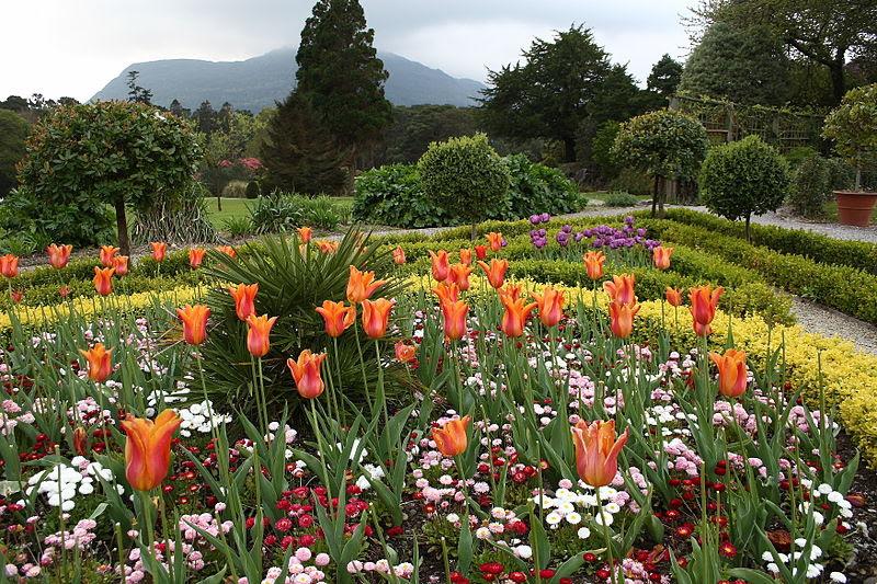 படிமம்:Flower Garden at Muckross House.jpg