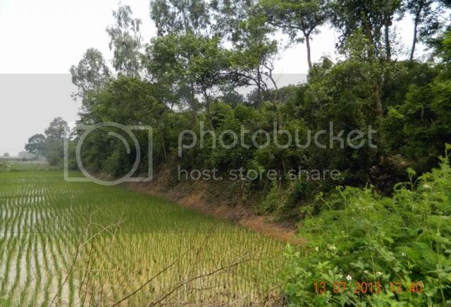 http://i577.photobucket.com/albums/ss214/Thanh50_2009/THANH%20CO%20LOA/ResizeofDSCN2601_zpsd76dd8b3.jpg