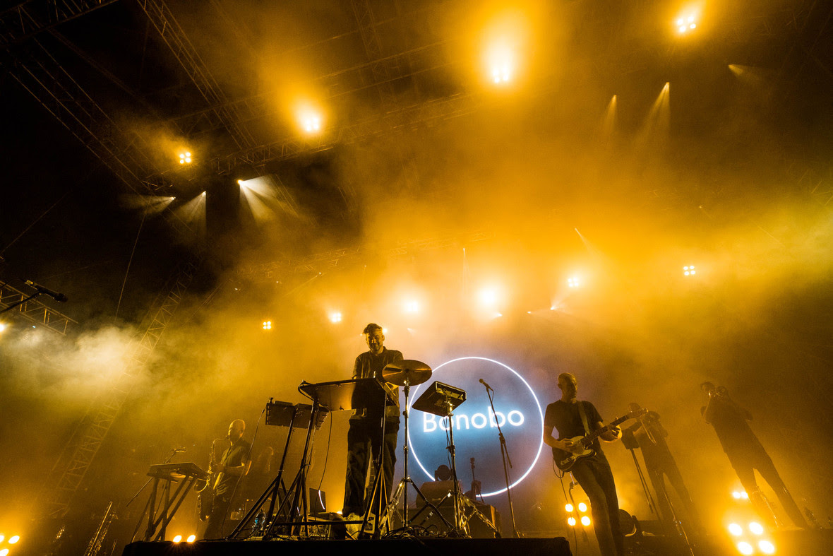 Bonobo Photo Marko Obradovic