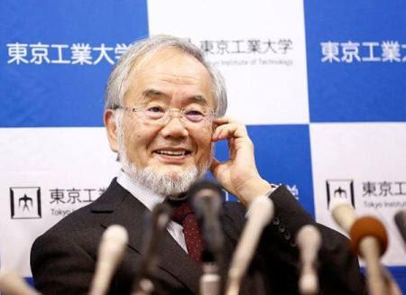 Giáo sư người Nhật, ông Yoshinori Ohsumi vừa nhận được giải Nobel Y học. Ảnh: internet