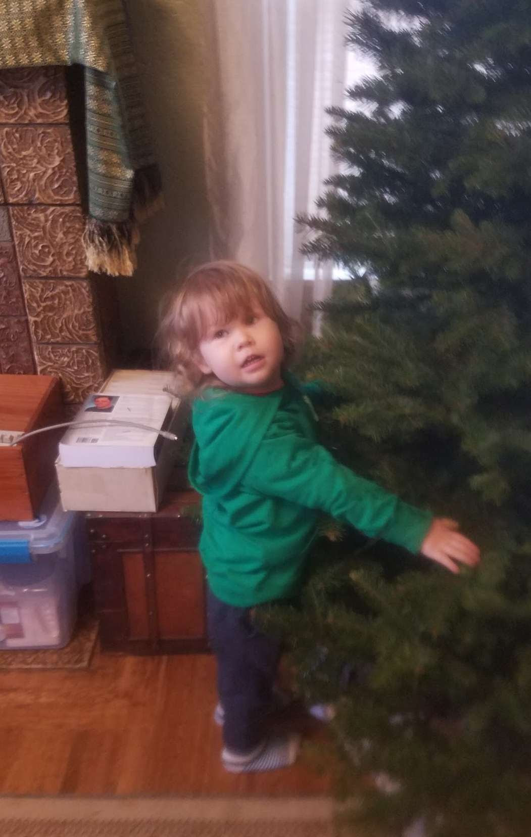 picture of Theo hugging a tree