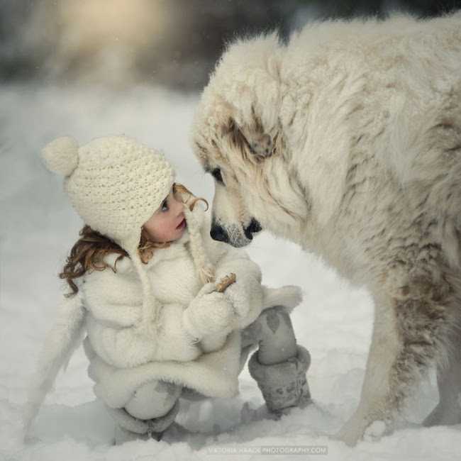 http://s.fishki.net/upload/post/201412/02/1339454/10379010-r3l8t8d-650-small-babies-children-big-dogs-61__880.jpg