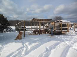Winter on the farm.jpg
