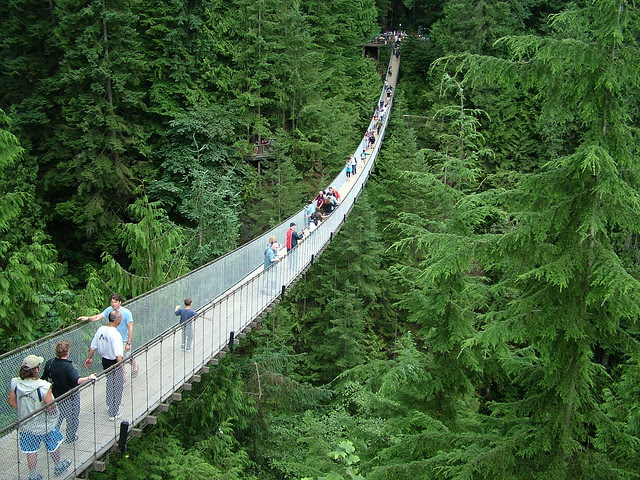 5_Most_Spectacular_Bridges_of_Vancouver_2
