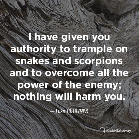 Read Luke 10:19 on Bible Gateway.