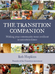 The Transition Companion cover
