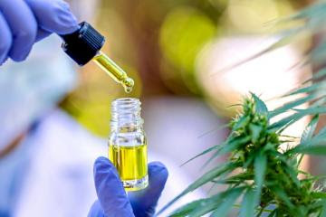 Facilitan uso medicinal y terapéutico del cannabis y sus derivados