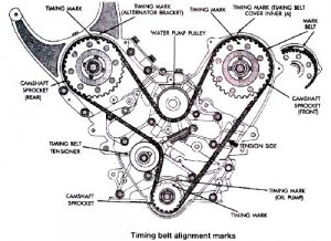 timing belt detailed graphic
