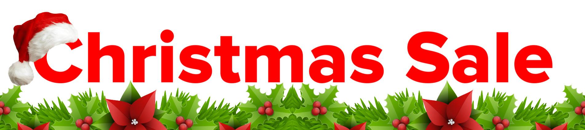 EaseUS Christmas Sale