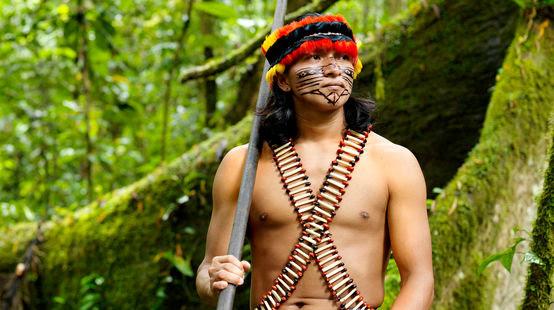 Indígena, Amazonía