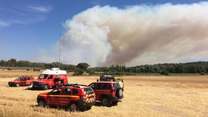 Incendies dans les Bouches-du-Rhône : 750 hectares parcourus par les flammes, le feu est sous contrôle
